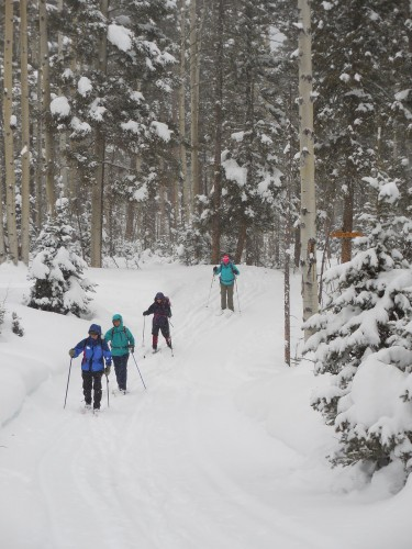 Beginner tour at Enchanted Forest, Red River, NM 2015