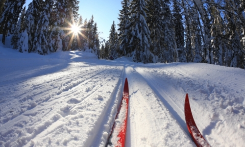 5526_6752_Steamboat_Springs_Cross_Country_Skiing_md